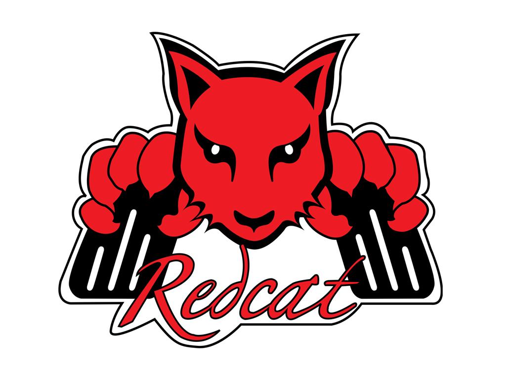 Redcat SUMO Truck & Truggy SUPER FAST